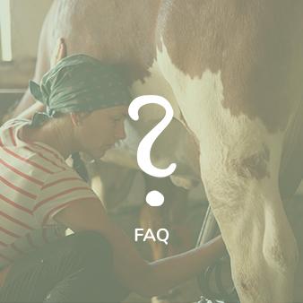 Martina_Fischer_Alm_FAQ